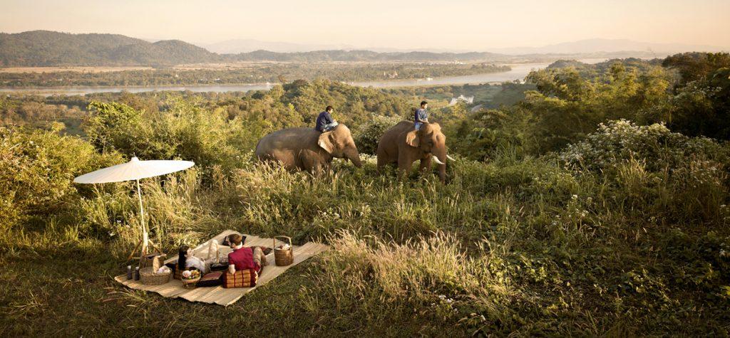 picnic au milieu des elephants thailandais