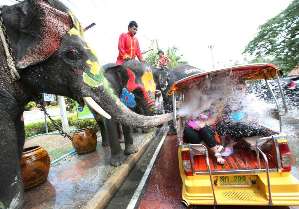 sonkgran elephant jet d'eau festival